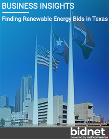 Finding Renewable Energy Bids in Texas