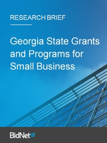 Georgia State Grants and Programs for Small Business