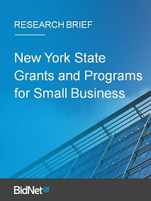 New York State Grants and Programs for Small Business | Research Brief