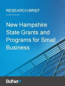 New Hampshire State Grants and Programs for Small Business