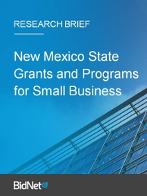 New Mexico State Grants and Programs for Small Business