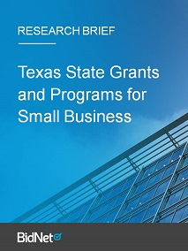 Texas State Grants and Programs for Small Business: Research Brief